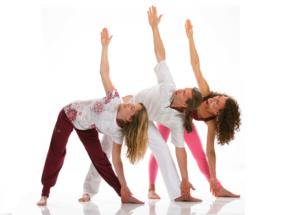 Yoga Vidya Bayreuth Probestunde